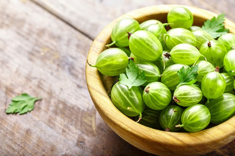 what-are-gooseberries