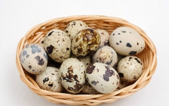 are quail eggs better than chicken