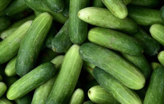 can you freeze whole cucumbers