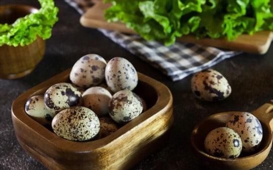 disadvantages of eating quail eggs