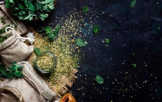 fresh oregano vs dried oregano