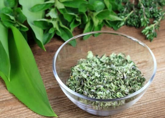 health and nutritional benefits of oregano