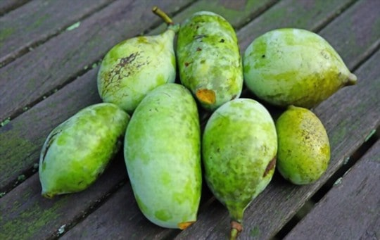 health and nutritional benefits of pawpaw