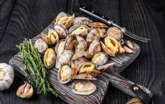 what do clams taste like