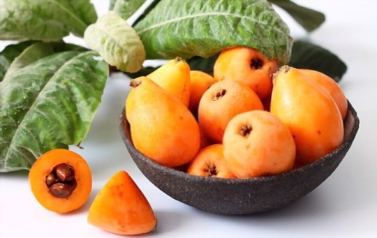 what do loquats taste like
