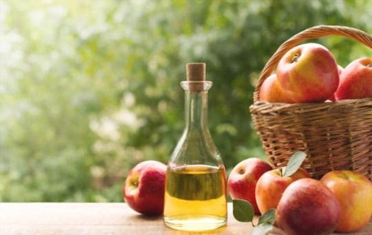 what does apple cider vinegar taste like