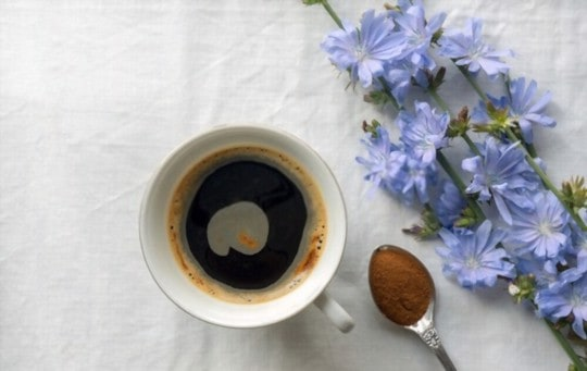 what does chicory coffee taste like