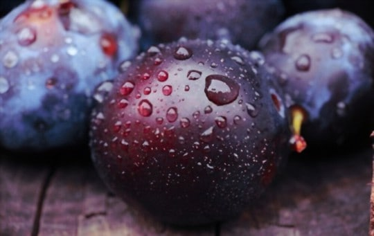what fruit is similar to plum