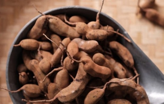 what is tamarind