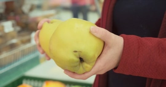 where to buy quince