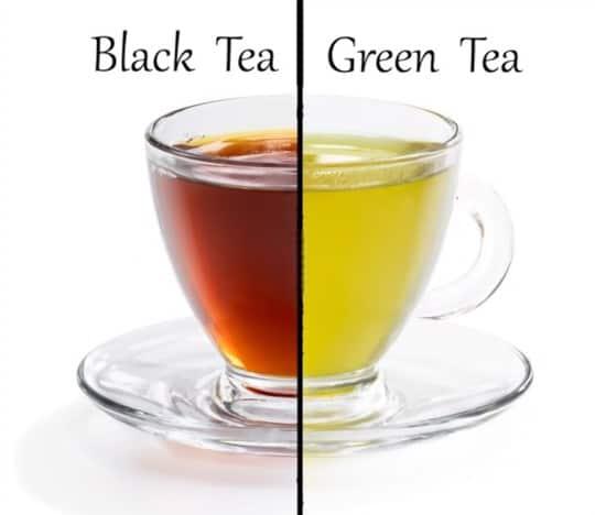 which tastes better green or black tea