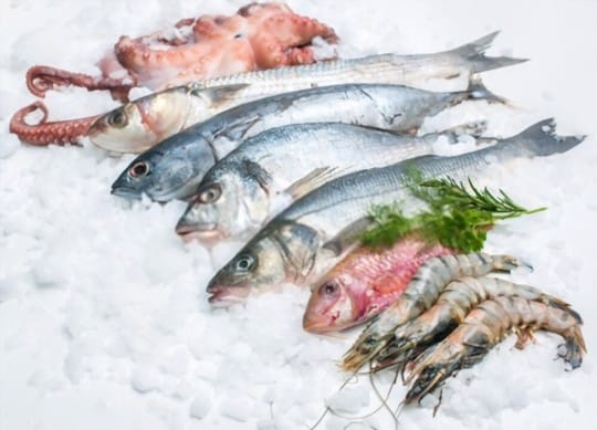 a complete guide to freezing fish