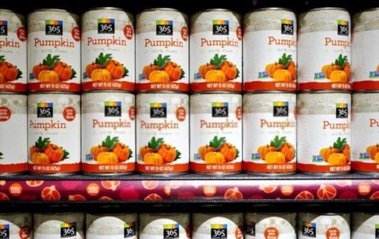 Can You Freeze Canned Pumpkin? How to Freeze Canned Pumpkin?