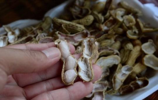 how long do boiled peanuts last