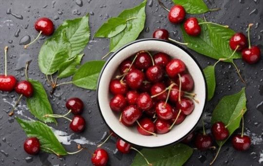 how long do cherries last