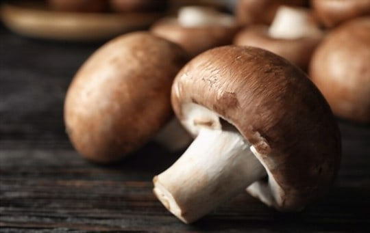how to select the best mushrooms