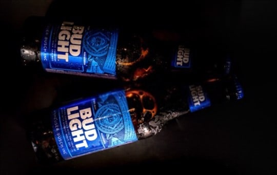 how to store bud light