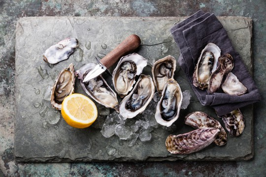 how to store fresh oysters