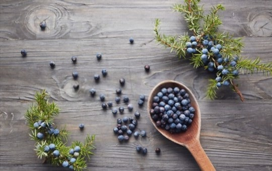 how to store juniper berry