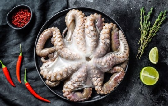 how to store octopus