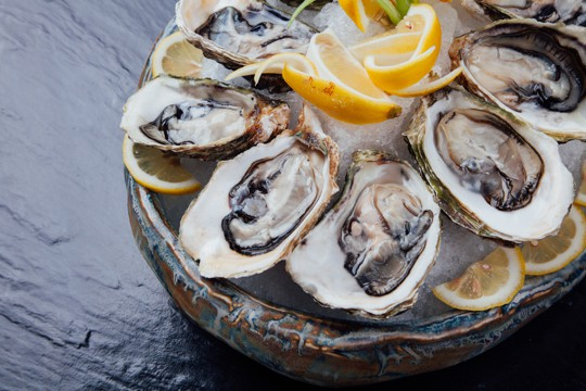 how to store oysters