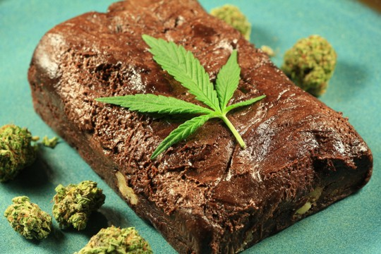how to store weed brownies