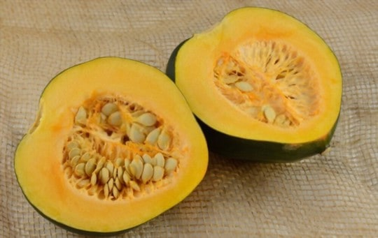 how to tell if acorn squash is bad