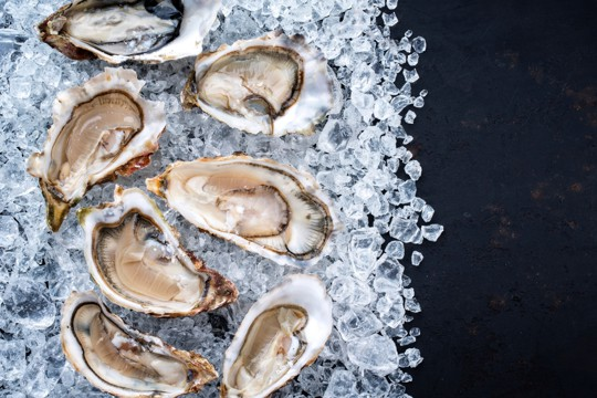 how to tell if oysters are bad