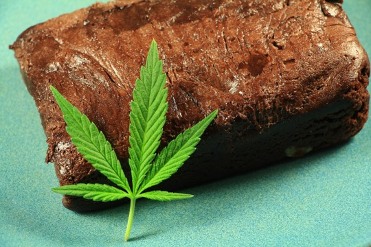 how to tell if weed brownies are bad