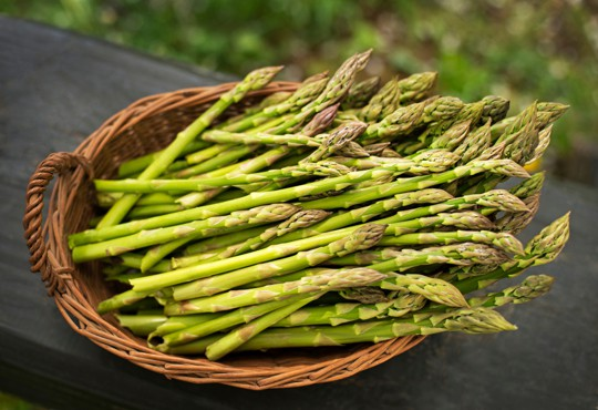 nutritional benefits of asparagus