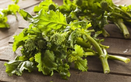 nutritional benefits of broccoli rabe