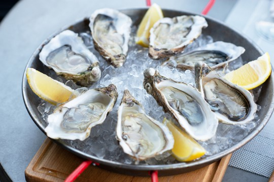 nutritional benefits of oysters