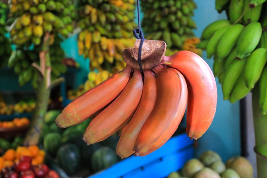 nutritional benefits of red banana