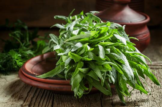 nutritional health benefits of tarragon