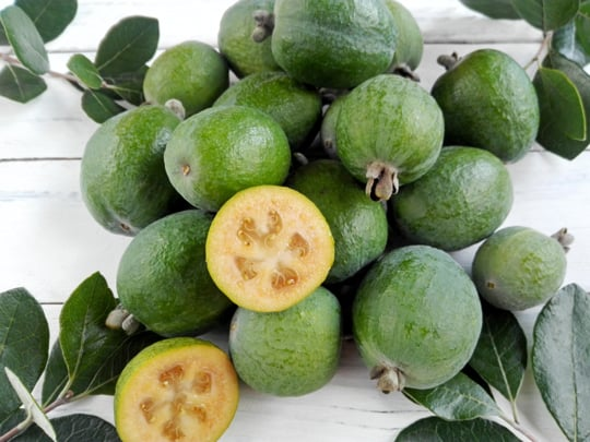 nutritonal benefits of feijoas