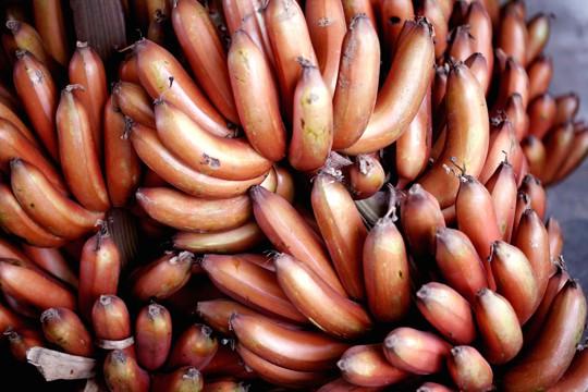red banana vs yellow banana