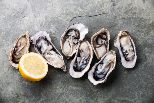 what do oysters taste like