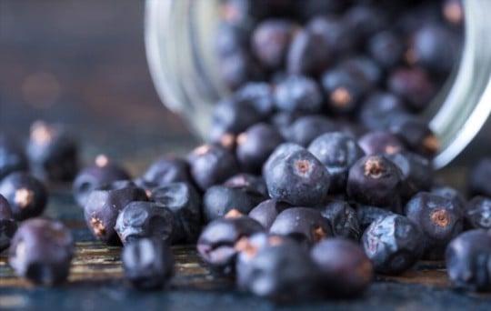 what does juniper berry taste like