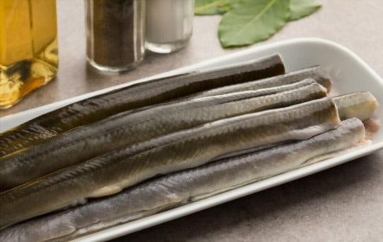 what is eel
