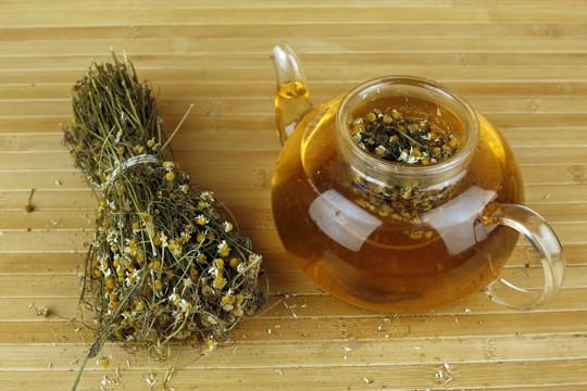 where to buy chamomile tea
