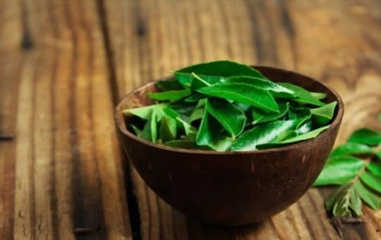 The 5 Best Substitutes for Curry Leaves