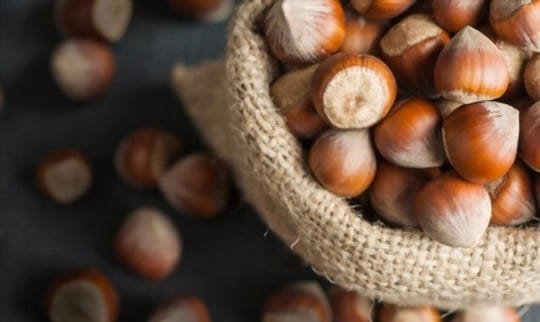 The 5 Best Substitutes for Hazelnuts