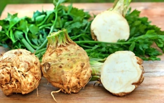 what is celery root