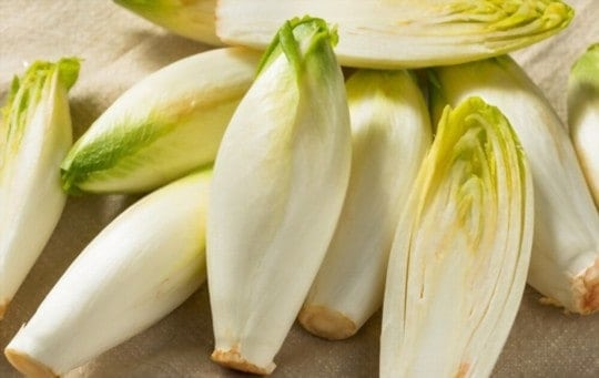 The 5 Best Substitutes for Endive