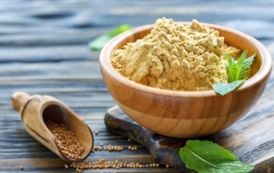 The 5 Best Substitutes for Mustard Powder