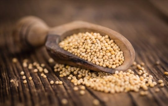 what are mustard seeds